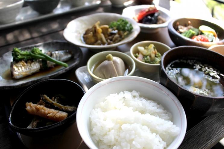 bi 116 03 人間本来の自然治癒力を、バランスのいい食事で手に入れよう!