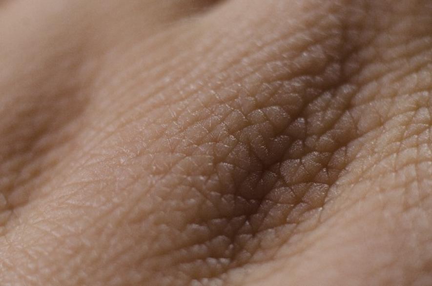 bi 030 02 皮膚は最大最強のバリア。どんな役割をしてくれているの?