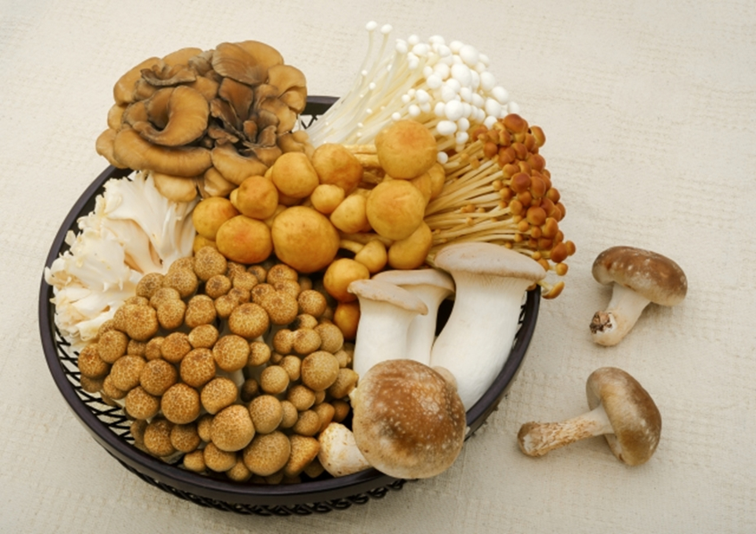bi 141 03 食物繊維をたくさん摂って、有害物質を身体から追いだそう!